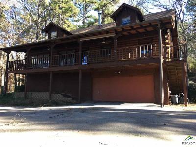 Tyler Single Family Home For Sale: Lake Road E 14449
