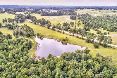Acreage For Sale: Fm 16 E