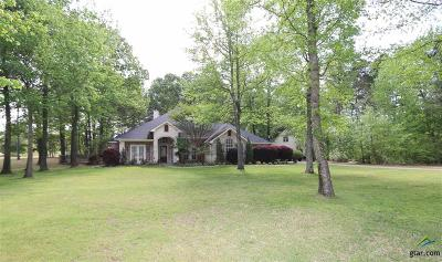 Lindale Single Family Home For Sale: 17654 Briarpatch