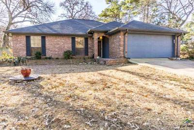Single Family Home For Sale: 17537 Dupree Dr