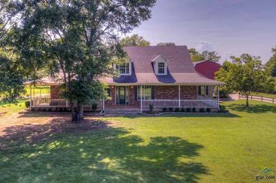 Bullard Single Family Home For Sale: 12010 W Fm 346