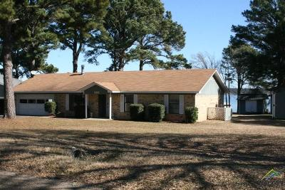 Chandler Single Family Home For Sale: 2881 Neches Drive