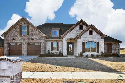 Tyler Single Family Home For Sale: 7321 Tule Creek Lane