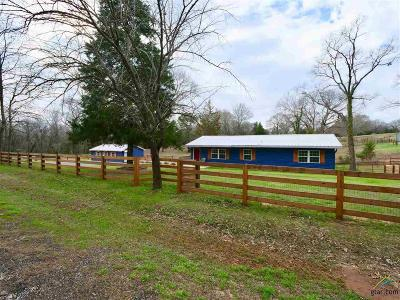 Lindale Single Family Home For Sale: 21053 Fm 16 W