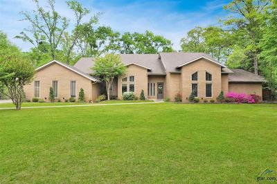 Tyler Single Family Home For Sale: 1985 Hollystone Dr
