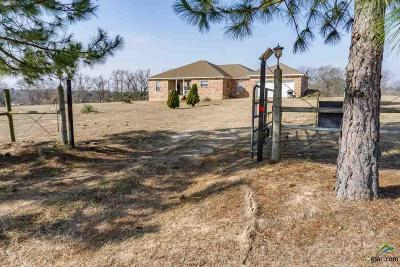 Lindale Single Family Home For Sale: 15687 County Road 498 (Legion Hills)
