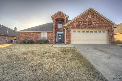 Tyler Single Family Home For Sale: 7359 Rockpoint
