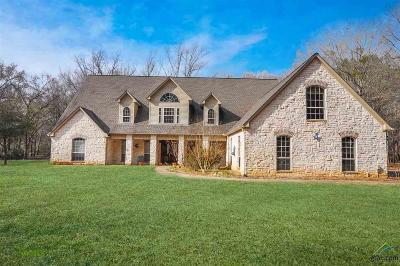 Tyler Single Family Home For Sale: 19020 Oakbrook