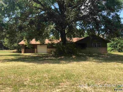 Tyler Single Family Home For Sale: 11398 County Road 1113