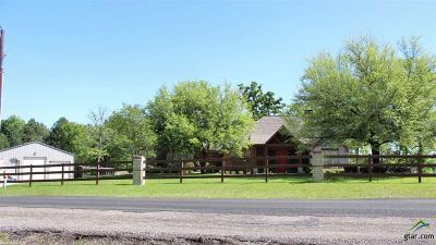 Tyler Single Family Home For Sale: 14163 County Road 193