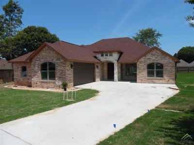 Tyler Single Family Home For Sale: 4008 Chapel Ridge