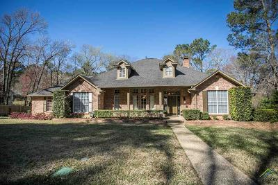 Tyler Single Family Home For Sale: 9319 Chisholm Trail