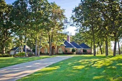 Lindale Single Family Home For Sale: 13210 Thicket Trail Dr.