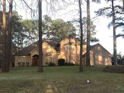 Tyler Single Family Home For Sale: 9141 Chisholm Trail