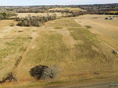 Acreage For Sale: 2100 () Byrd Rd Lot 1