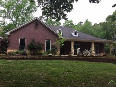 Lindale Single Family Home For Sale: 15811 County Road 4191