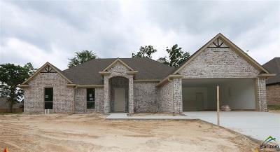 Tyler Single Family Home For Sale: 4203 Chapel Ridge