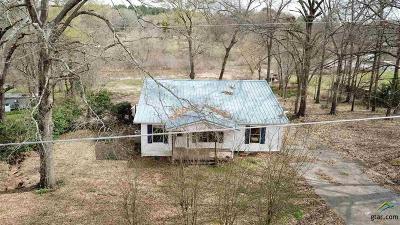 Whitehouse Single Family Home For Sale: 12255 S Hillcreek