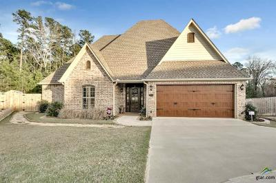 Tyler Single Family Home For Sale: 7338 Princedale