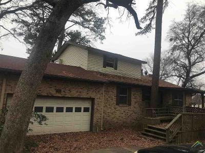 Flint Single Family Home For Sale: 18052 S Shore Dr