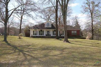 Tyler Single Family Home For Sale: 15482 County Road 2223