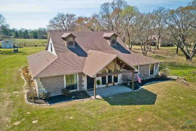 Lindale Single Family Home For Sale: 22711 County Road 422