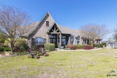 Lindale Single Family Home For Sale: 16281 Beacons Jet Ct.