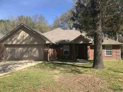 Tyler Single Family Home For Sale: 2204 Pinkerton