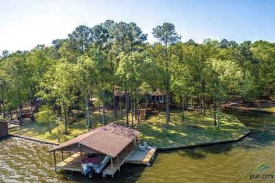 Mt Vernon TX Single Family Home For Sale: $749,000