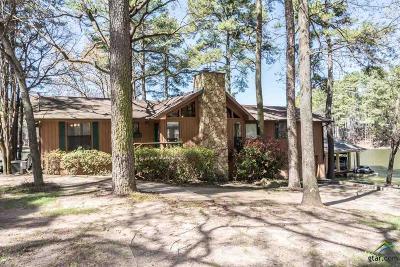 Mt Vernon TX Single Family Home For Sale: $459,900