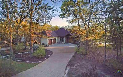 Wood County Single Family Home For Sale: 480 County Road 2307