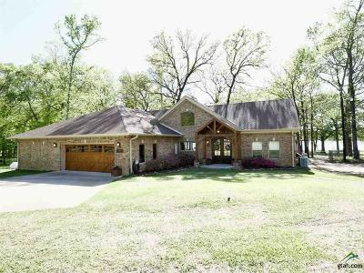 Tyler Single Family Home For Sale: 14062 Eastside