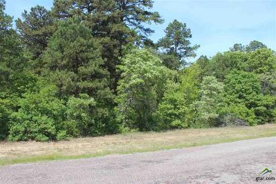 Tyler Residential Lots & Land For Sale: County Road 3147
