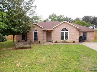 Tyler Single Family Home For Sale: 15804 Echo Glen Drive