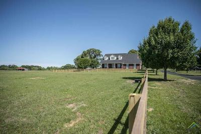 Tyler Single Family Home For Sale: 15176 County Road 472