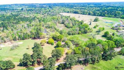 Upshur County Single Family Home For Sale: 3652 Fm 2263