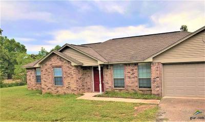 Tyler Single Family Home For Sale: 4967 Antler