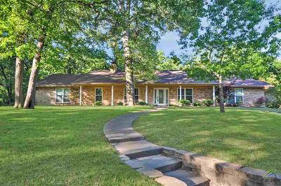 Tyler Single Family Home For Sale: 10309 Lakeshore