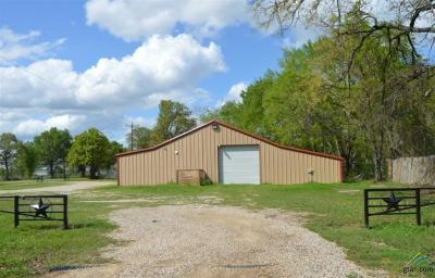 Alba Commercial For Sale: 4288 N Fm 17