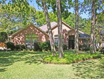 Tyler Single Family Home For Sale: 4118 Hollow Oak Circle