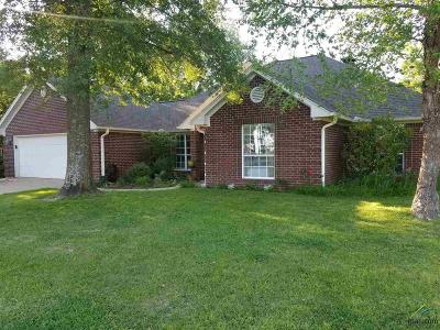 Single Family Home For Sale: 4275 County Road 2137
