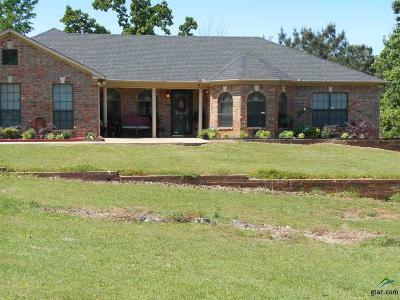 Single Family Home For Sale: 2575 County Road 3405