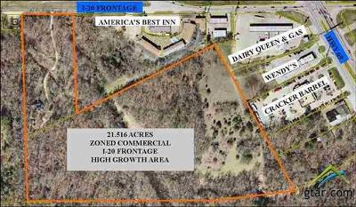 Lindale Commercial For Sale: 13473 I-20 W