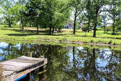 Alba TX Single Family Home For Sale: $250,000