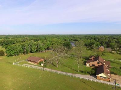 Grand Saline Single Family Home For Sale: 252 Vz County Road 1316