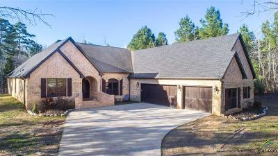 Longview Single Family Home For Sale: 380 Cedar Springs Drive