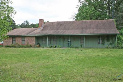 Lindale Single Family Home For Sale: 13547 County Road 4178