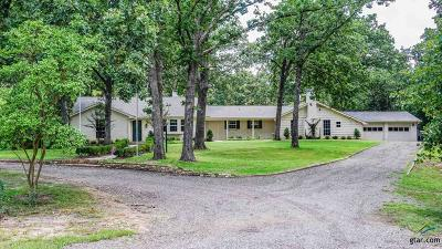 Tyler Single Family Home For Sale: 14156 County Road 193 (Taylor Rd)