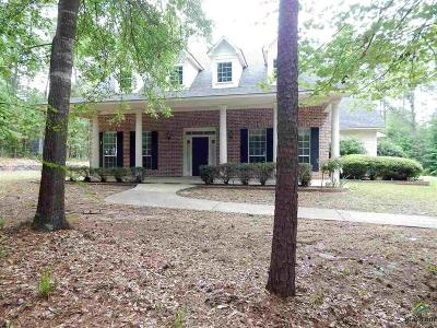 Flint Single Family Home For Sale: 17377 Timberland Trail