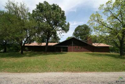 Grand Saline Single Family Home For Sale: 1080 Vzcr 1803